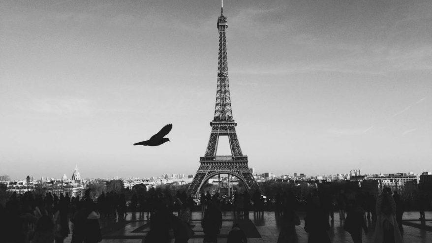 black-and-white-city-bird-people